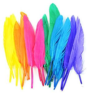 Touch of Nature 24-Piece Mini Indian 3-Inch Vibrant Feather Assortment for Arts and Craft