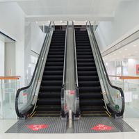 Small Residential Escalator In Home Best Price Escalator