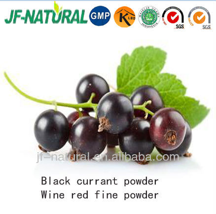 black currant dry powder