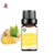 Ginger Oil Pure Natural Extract Essential Oils Spices Raw Material for Food Cosmetics Medicine