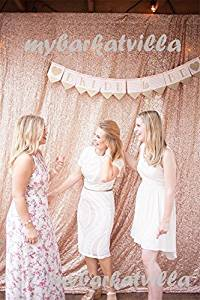 TRLYC 9ft*9ft Sparkly Champagne Shimmer Sequin Fabric Photography Backdrop Sequin Curtain for Wedding/ Party
