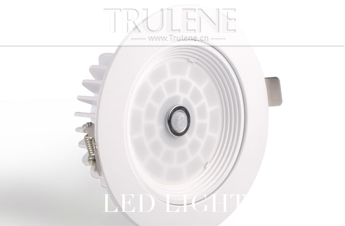LED light Downlight (1).png