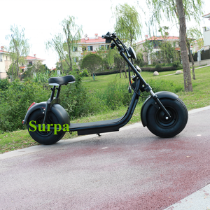 electric scooter price in india/surpa 18*9.5inch 3000w 2000w 1500w citycoco fat tire electric sports motorcycle