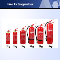 High Quality Different Capacity ABC Dry chemical powder Fire Extinguisher