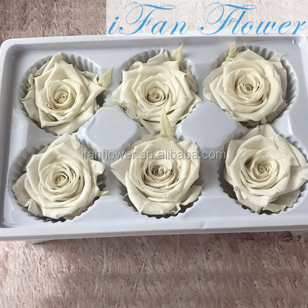 Vietnam preserved rose flower for home decoration. bases for roses arrangments flower keep long time, safety color