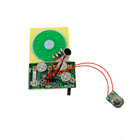 Music IC Chip For Birthday Greeting Cards / Sound Recording Module