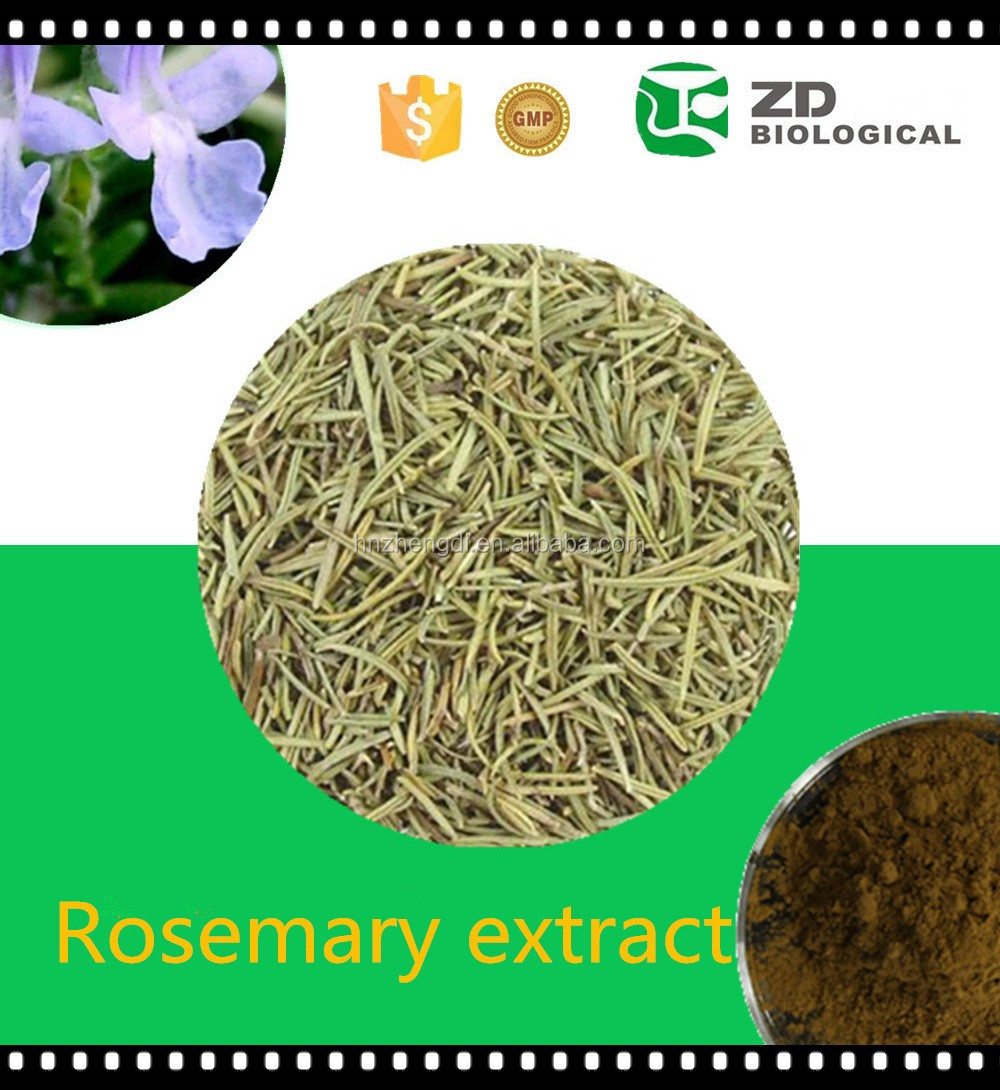 Green World Herbal Products Rosmarinic Acid Rosemary Extract