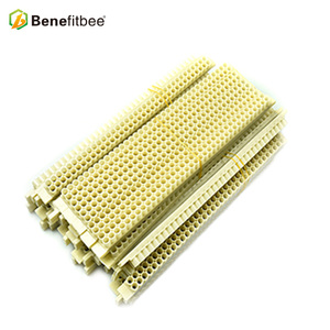 Apis Mellifera Beekeeping Material No Graft Queen Rearing Kit Bee Keeping Supplies For Wholesale