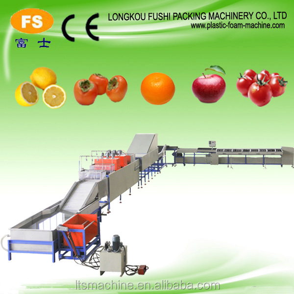 Complete Fruit Keep Fresh Processing Line