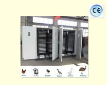 Full automatic Chicken Bird Ostrich Duck Turkey Quail Goose egg incubator for sale ZH--22528