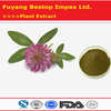 Hong Che Zhou Manufacturer Supply Organic Red Clover Extract