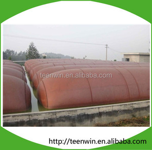 Teenwin biogas plant for india