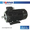 IE2 Asynchronous TAIZHOU WENLING Electric Motor