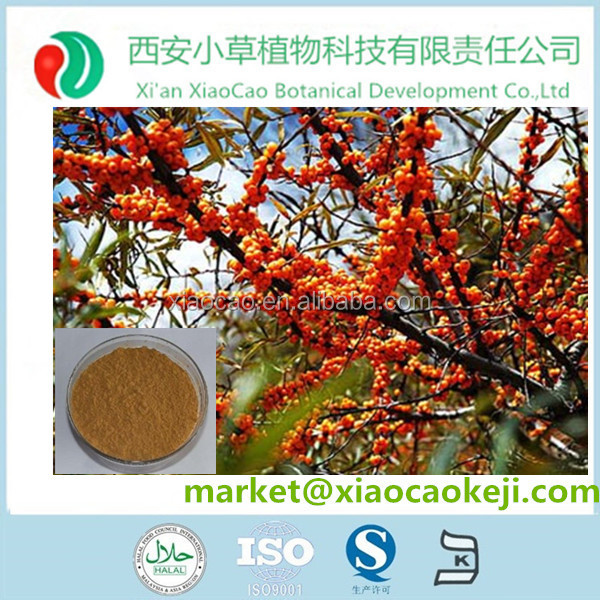 Top Sale High Quality Natural Seabuckthorn Fruit &seed Powder