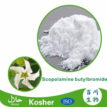 High quality scopolamine butylbromide powder 99% for sale