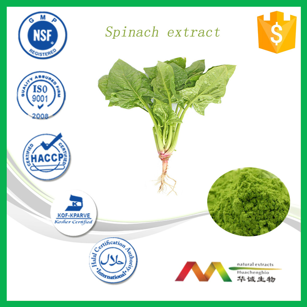 Functional vegetable powder spinach powder extract