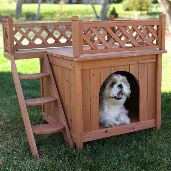 Walmart Dog Beds And House