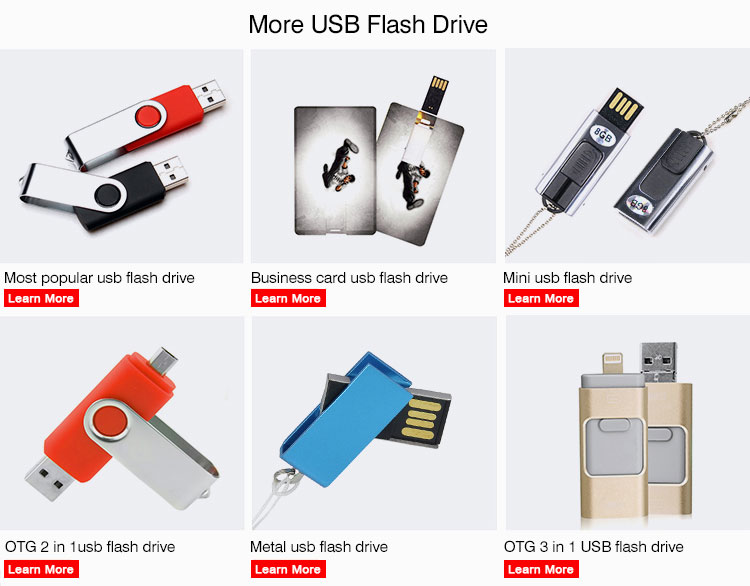 Cheap price 2 gb 4 gb usb drive pen flash drive for business