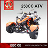 racing 250cc three wheel atv with EEC