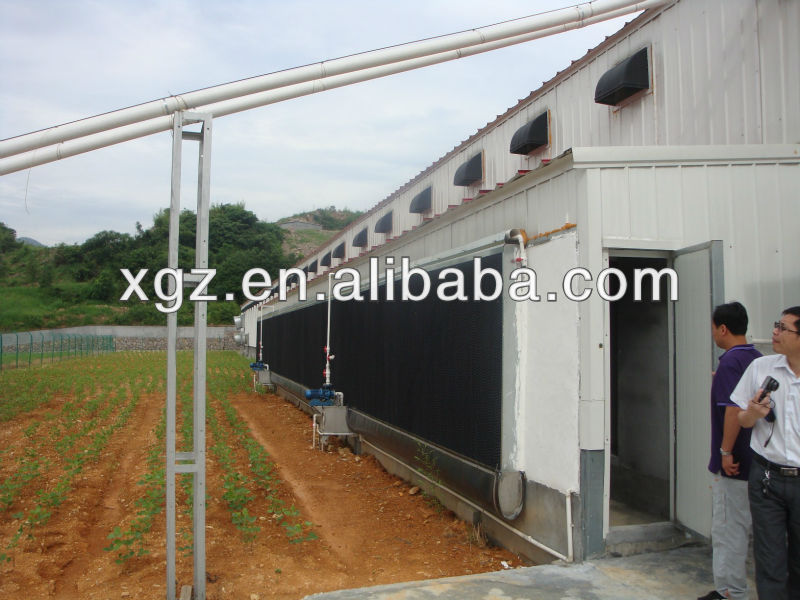 well-formed h type layer egg chicken cage poultry farm house