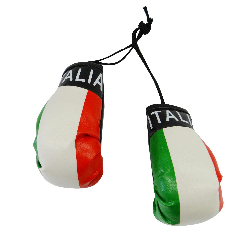 ITALY ITALIAN FLAG Mini Boxing Gloves *NEW*