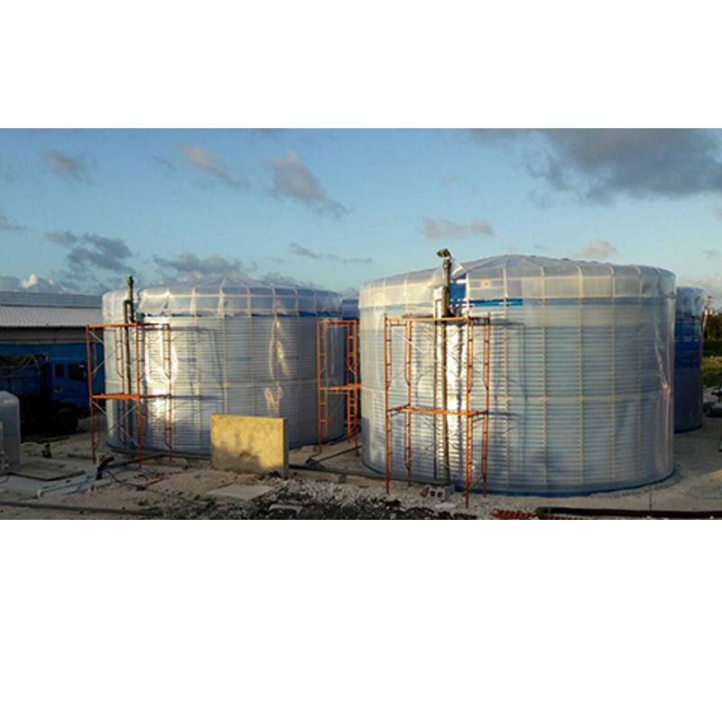 biogas power anaerobic digester plant