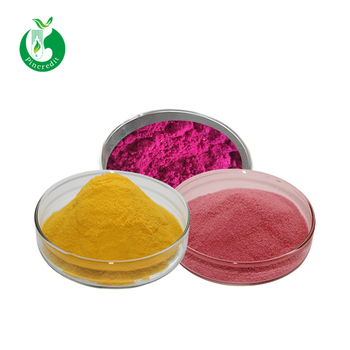 Food grade pure fruit juice powder fruit juice concentrate powder