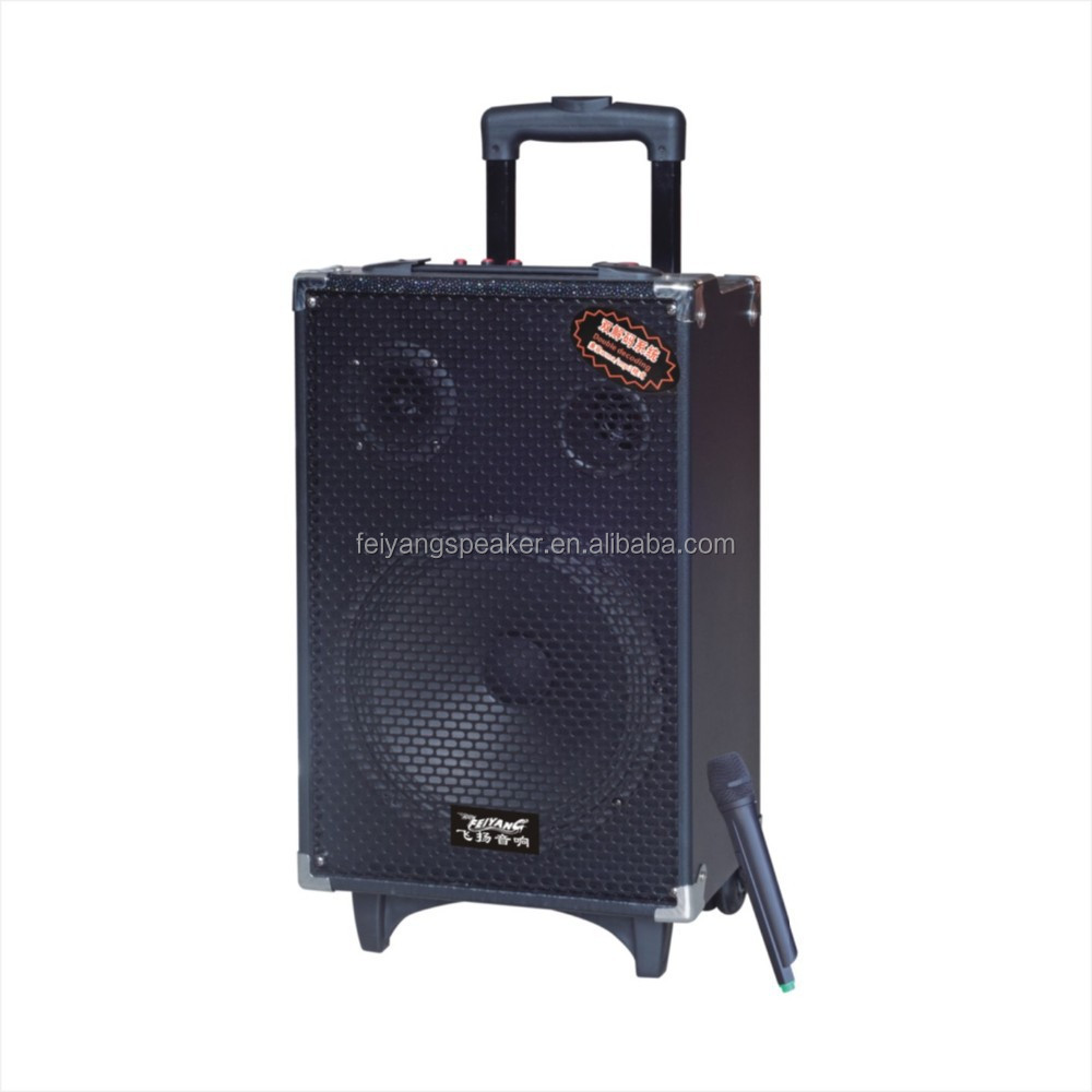good quality professional audio speaker with wireless microphone