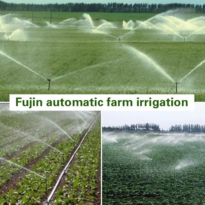 Home garden irrigation system home of home design for Home garden irrigation design