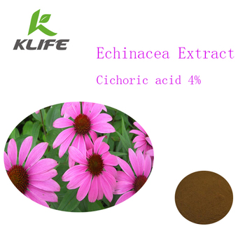 Factory direct supply organic Echinacea extract powder with 4% Cichoric acid