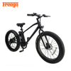 "2017 New 26"" Inch new style big tyre High Speed 500W beach cruiser bicycle"
