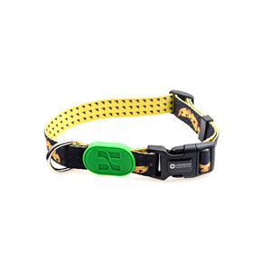 HiDREAM RAINBOW fashion and unique DOG COLLAR pet collars for dogs walking hold on style