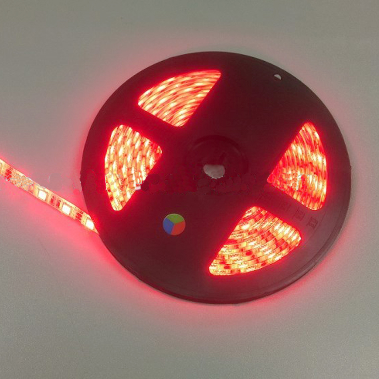 Outdoor Wearable Colored IP65 LED Strips Lighting