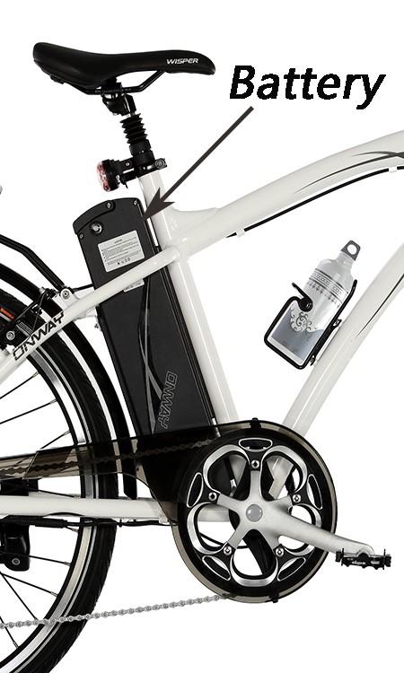 China factory wholesale 250W mountain electric bike
