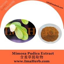 High Quality mimosa pudica extract powder