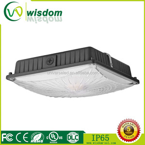Canopy ceiling mounted or building soffit led ceiling light