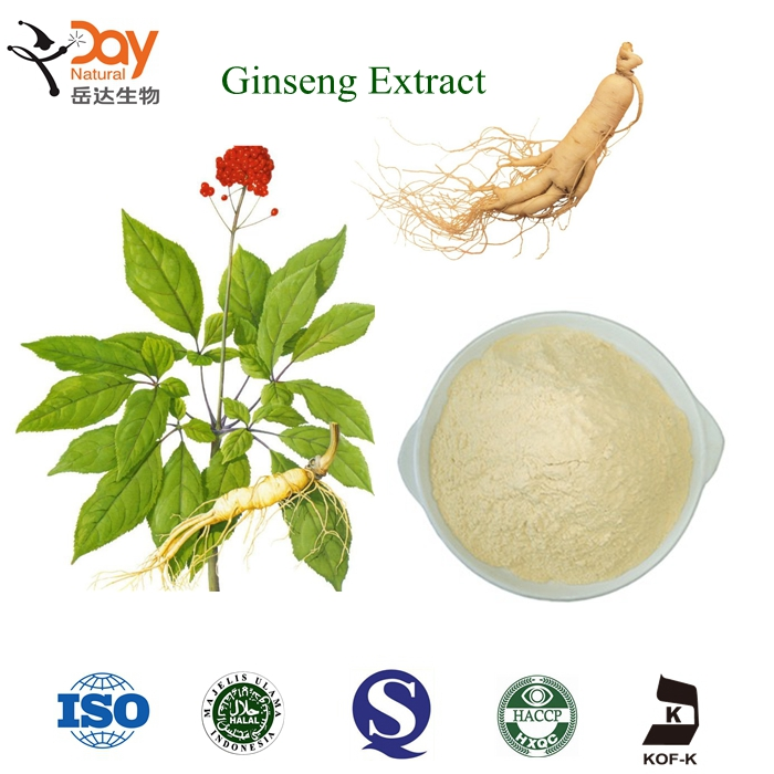 China Supply Natural ginseng extract buy From Pure Panax