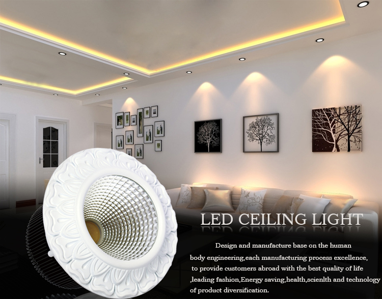 Eu style cob led down light ceiling light downlight