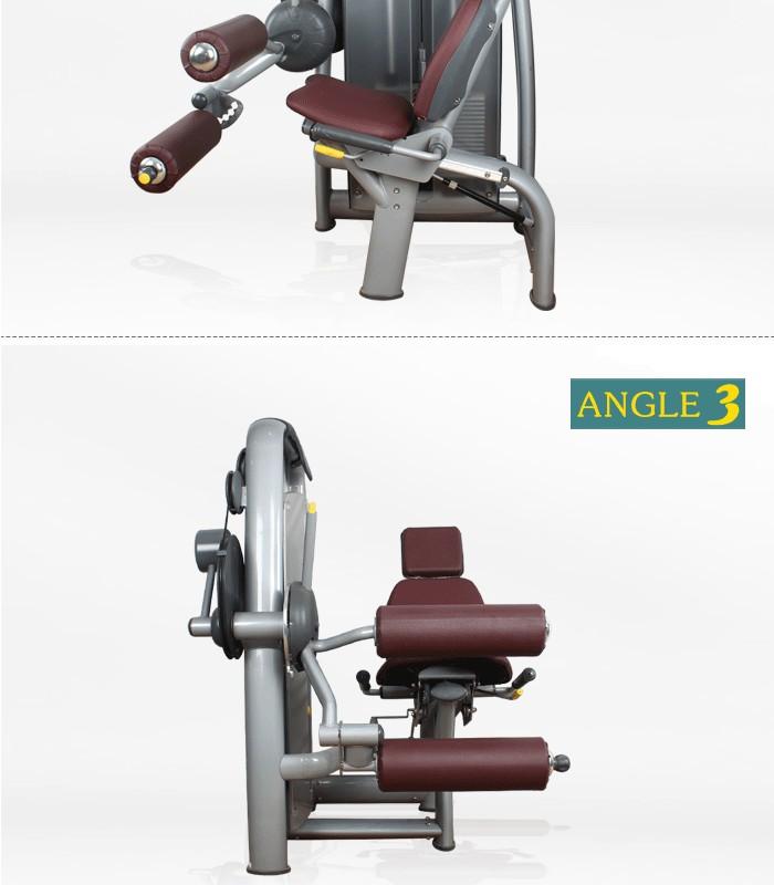 Techno selection maquinas de gimnasia leg extension gym for Maquinas para gym