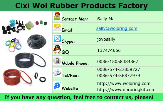 Factory Price Custom Clear Rubber Kalrez O-Rings