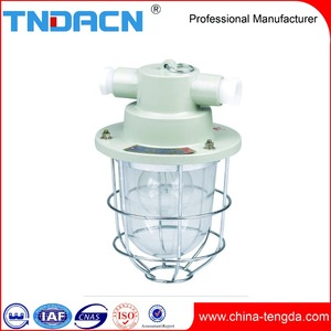 High Quality Outdoor IP66 60W Incandescent Lamp 100W Explosion Proof Lighting Fixture With Cheap Price Explosion-proof Lamp