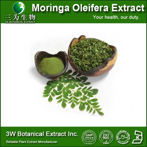 Moringa Oleifera Powder /moringa Oleifera Leaf Extract