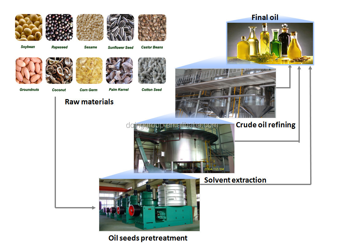 vegetable oil extraction process