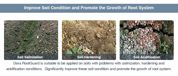 Good Quality Soil Conditional Bioguard Green Have Good Effects on Blight
