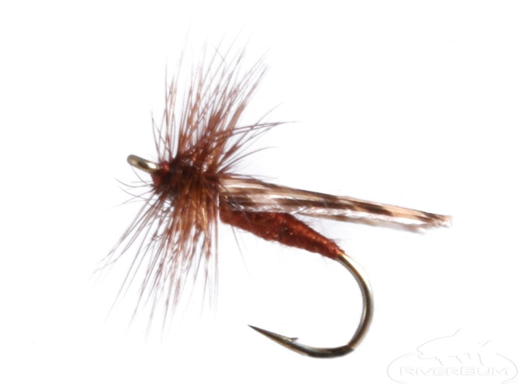 RiverBum Mottled Caddis, Brown Fishing Fly Mottled Caddis, Brown, Pack of 3