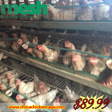 Alibaba China battery cages laying hens /layer cage/poultry chicken farm from poultry equipment for small farm