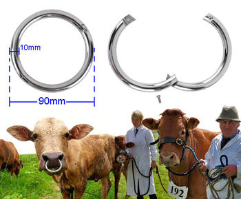 Cow Nose Ring Bull Nose Ring Holder Metal Stainless Steel Bull Ring