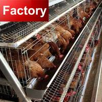Factory Quality poultry farm using chicken cage supplies