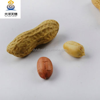 Red skin peeled roasted peanut in shell