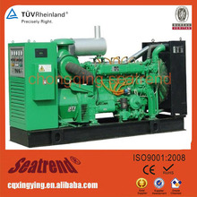 Commercial Standby Generators 300kw Natural Gas Generators Residential